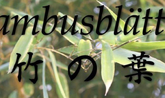 Bambusblätter Juni 2017