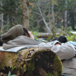 Forest Therapy – Waldtherapie